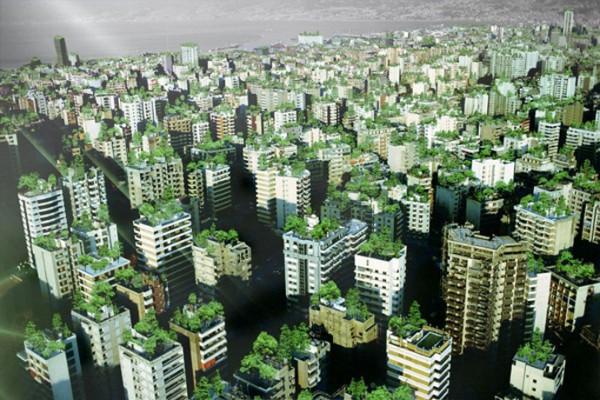 Fransa binaların çatısında bitki ya da güneş paneli istiyor